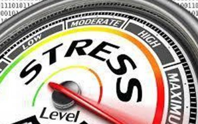 Do You Have a Strategy Stress Test (SST)